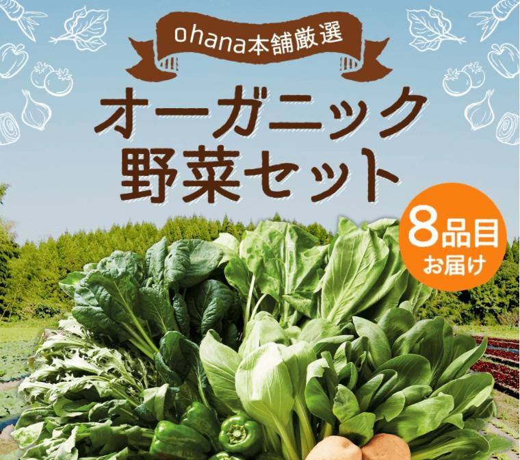 大分県臼杵市の有機JAS認証野菜