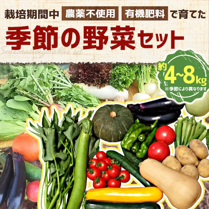 大分県竹田市の有機野菜セット