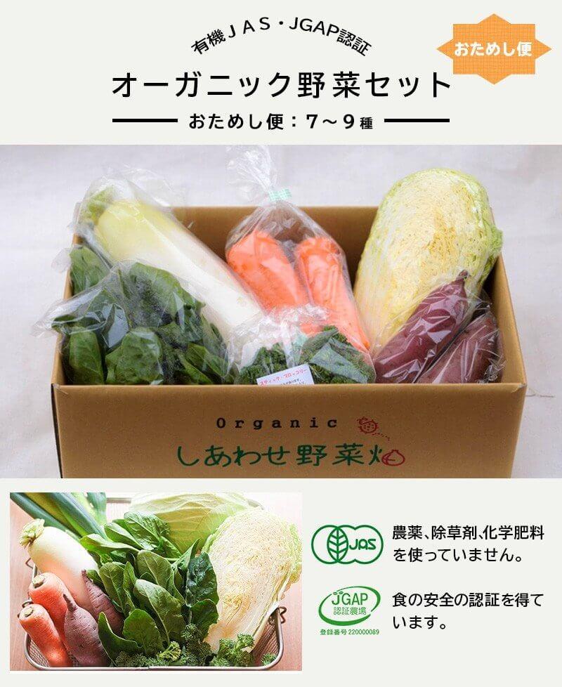 静岡県掛川市のJGAP認証オーガニック野菜セット